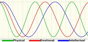 バイオリズムのグラフ